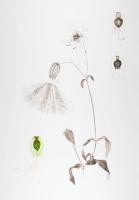 100 x 70 cm. Ink, watercolour